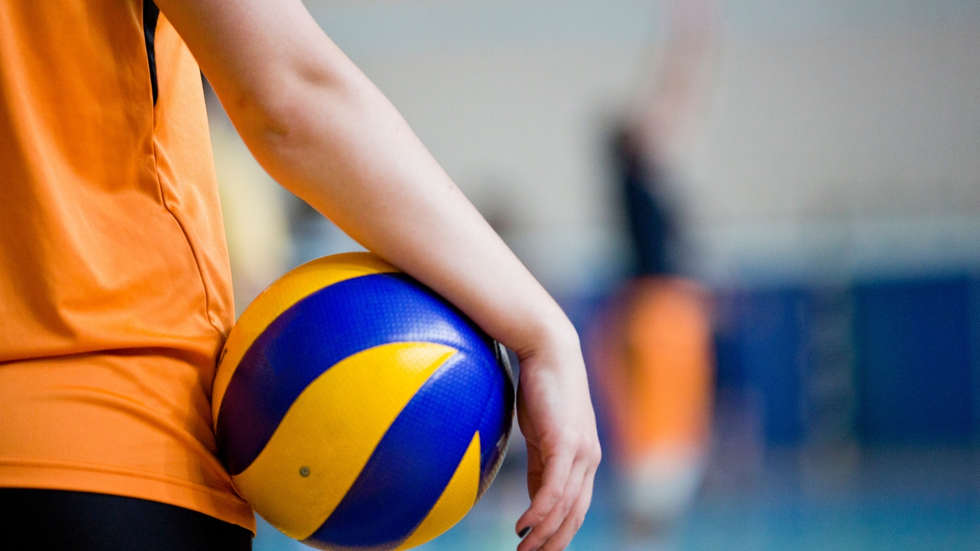 Volleyball wallpaper wallpapers