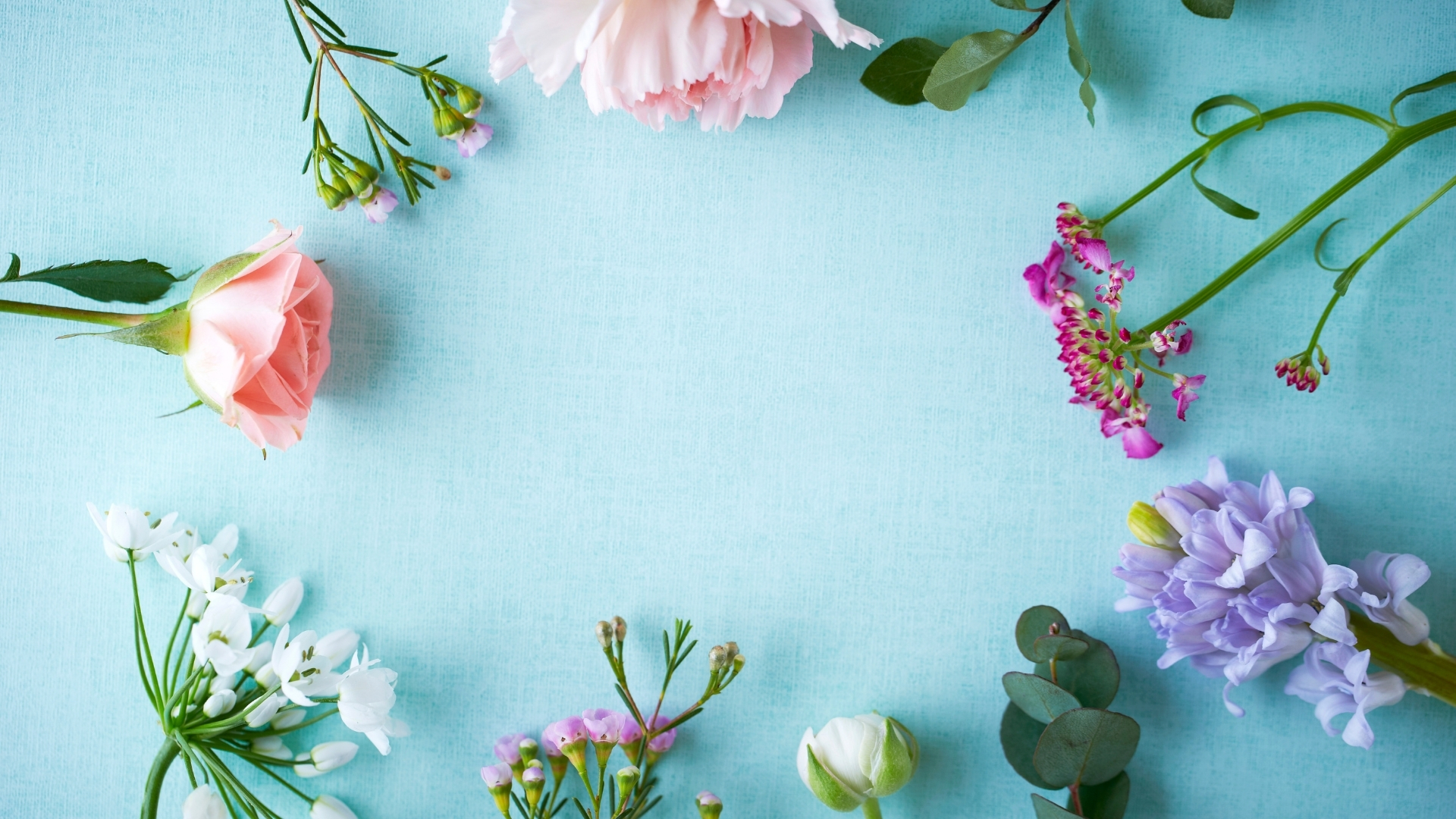 wallpapers of flower