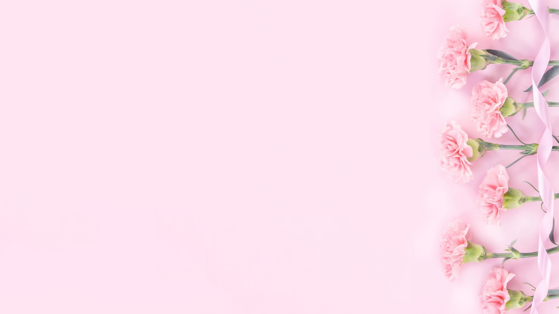 Baby pink background