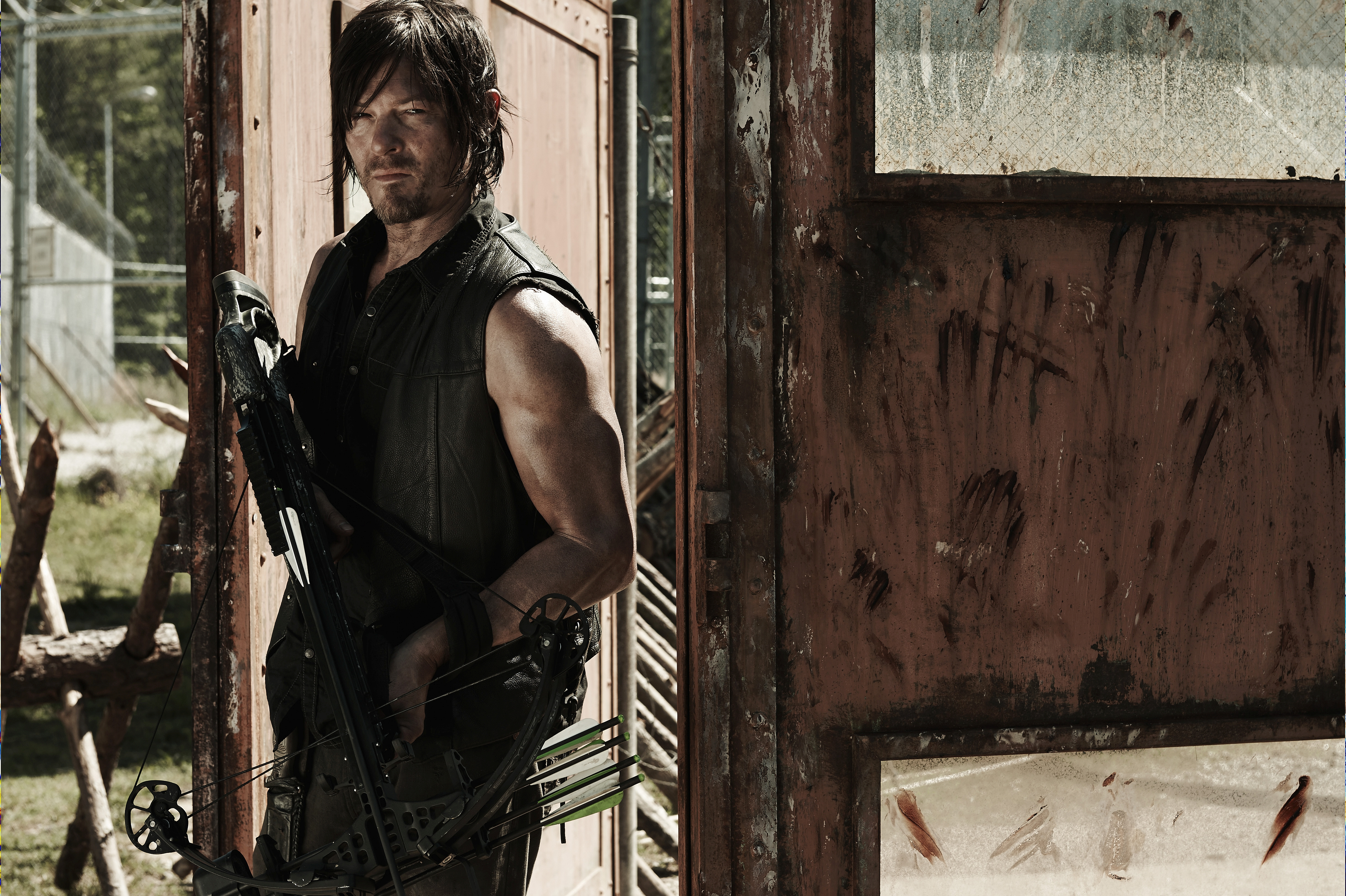 Pictures of the walking dead