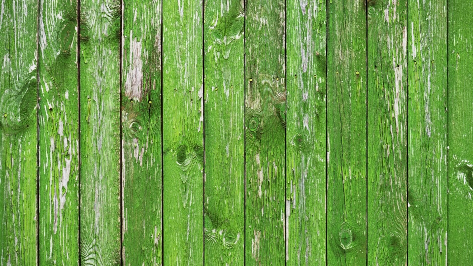 green aesthetic background