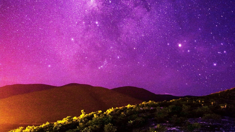 purple aesthetic pictures