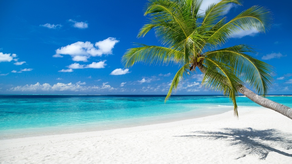 Beach background images